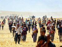 Şengal, Kürtlerin Birliği ve Bağımsızlık
