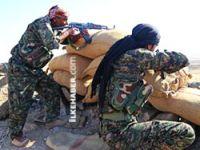 Rojava'da şiddetli çatışmalar: 16 Kürt köyü IŞİD'in eline geçti