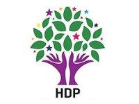 HDP'nin MYK listesi belli oldu
