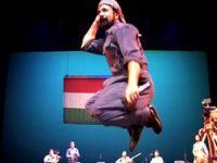 Şivan Perwer konserine CHP'den kimseyi çağırmadı!