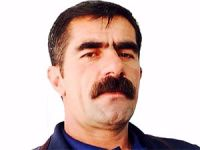 HDP Şemdinli İlçe Eş Başkanı tutuklandı