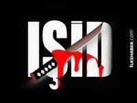 'IŞİD 2016'da yüzde 12 küçüldü'