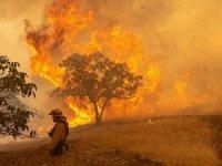 California'daki yangınlar kontrol altına alınamıyor