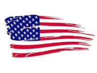 Ninova'da bir ABD askeri hayatını kaybetti