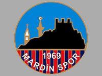 Mardinspor'da 'Domuz Gribi' şoku!