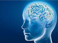 İnsan beynine benzeyen bilgisayar!