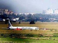 Martı sürüsüne çarpan uçak mısır tarlasına acil iniş yaptı