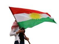 Suriye Muhalefet Başkanı: Kürtlerin bütün haklarını destekliyoruz