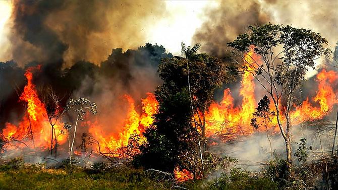amazon_fire_0821.jpg