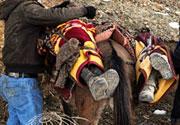 Uludere Katliamı - 29 Aralık 2011